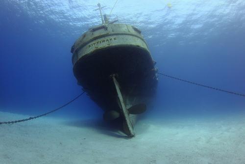 ship-wreck.jpg