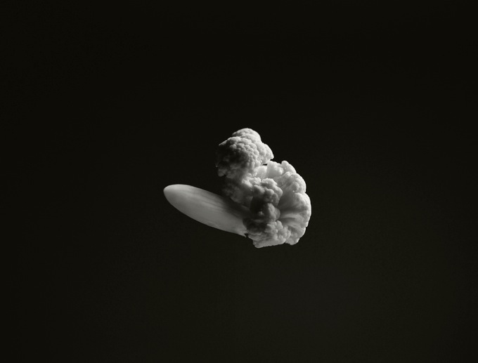 Explosion chou fleur 02